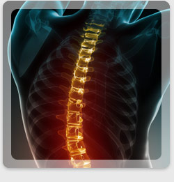 Chiropractic treatments can promote a healthier spine.